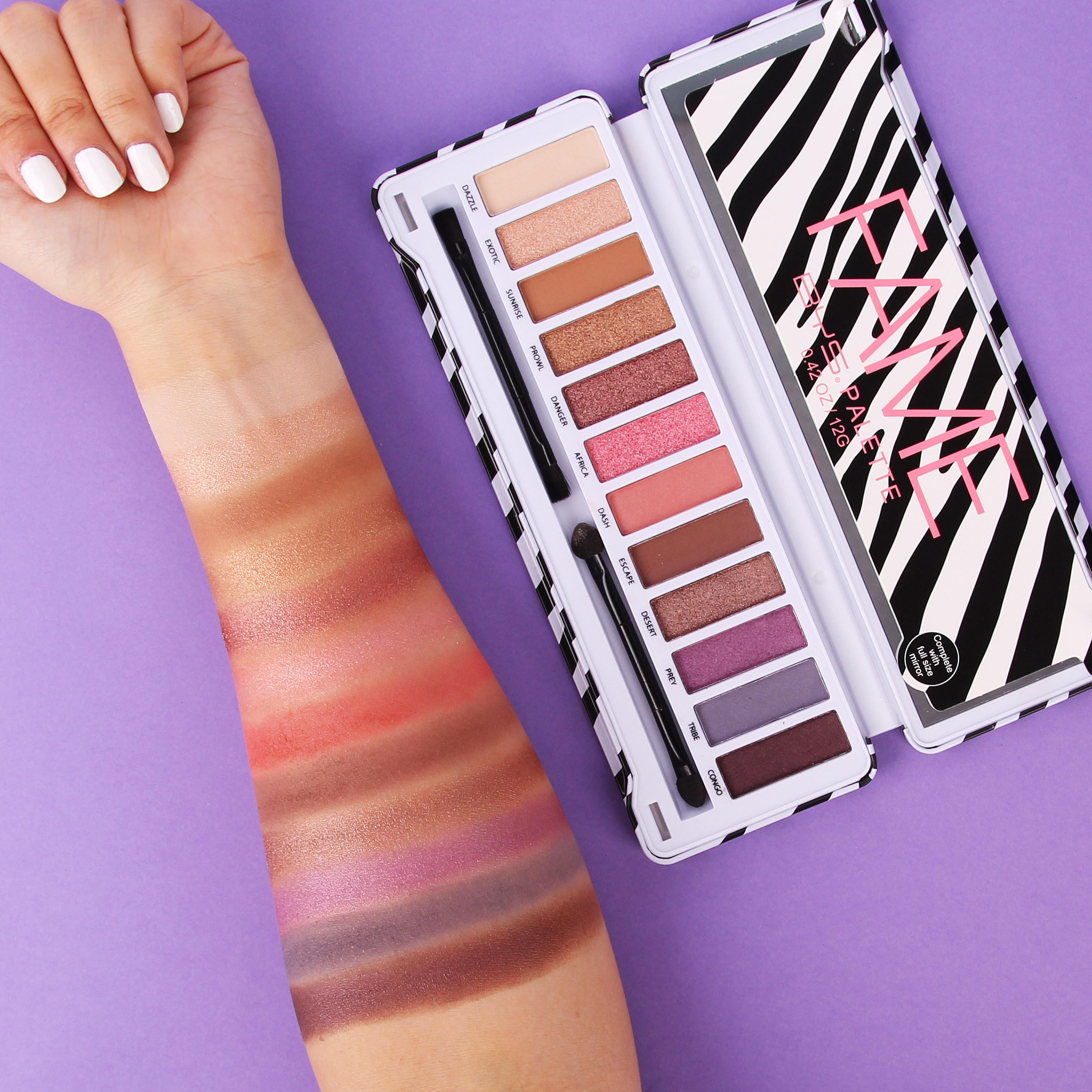 Palette Make-up Artist Fame